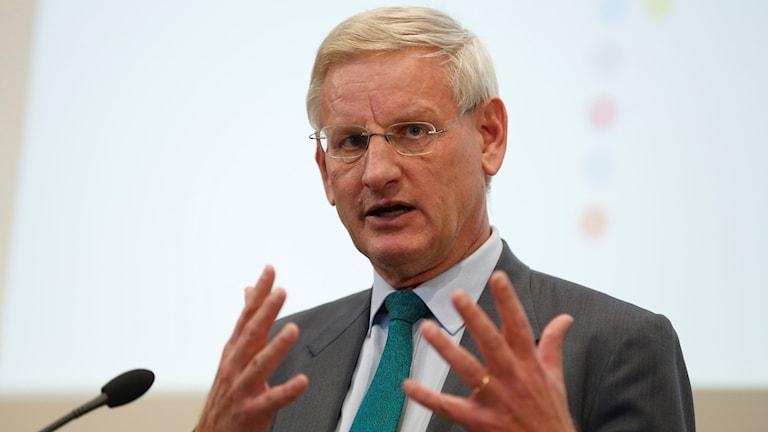 Carl Bildt, wasiirkii hore ee arrimaha dibada.