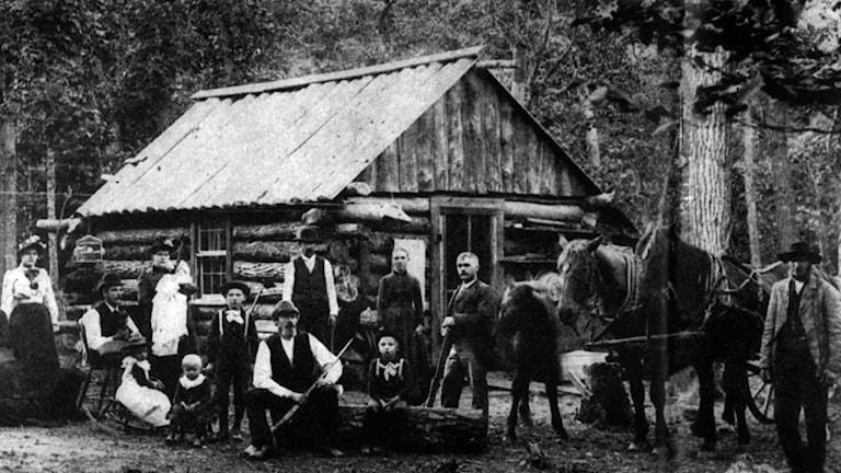 ARKIV MINNESOTA 1887