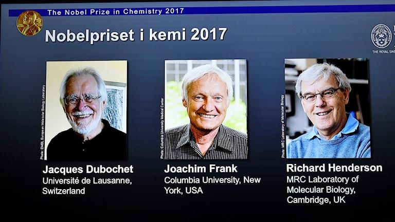 Abaalmarinta biladda Nobel ee kemistriga waxaa kala qeeybsanaya Jacques Dubochet, Joachim Frank iyo Richard Henderson.