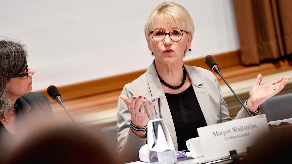 Margot Wallström (S)