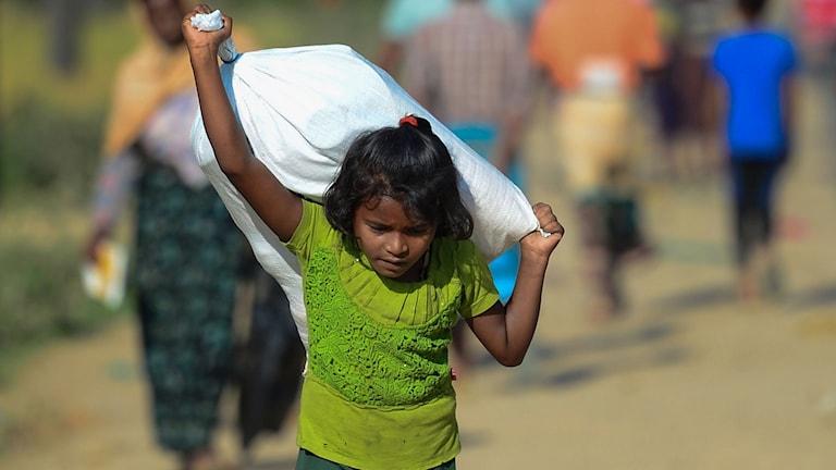 Dadka Rohingya oo ka qaxaya xad gudubla lagu hayo.