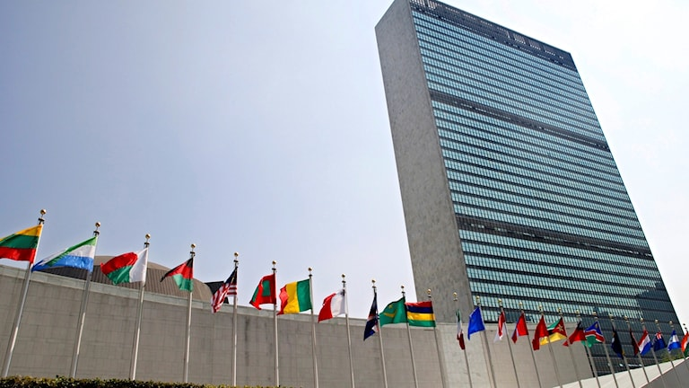 the flags of member nations fly outside the General Assembly building at the United Nations headquarters in New York.
