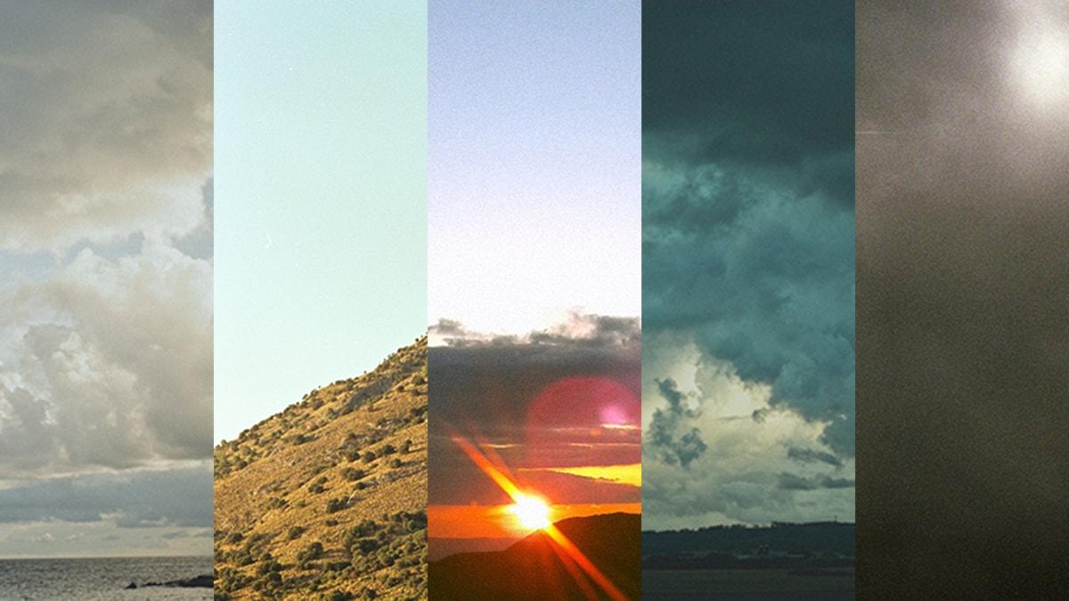 Klimatzoner   foto: Gustaf Pak