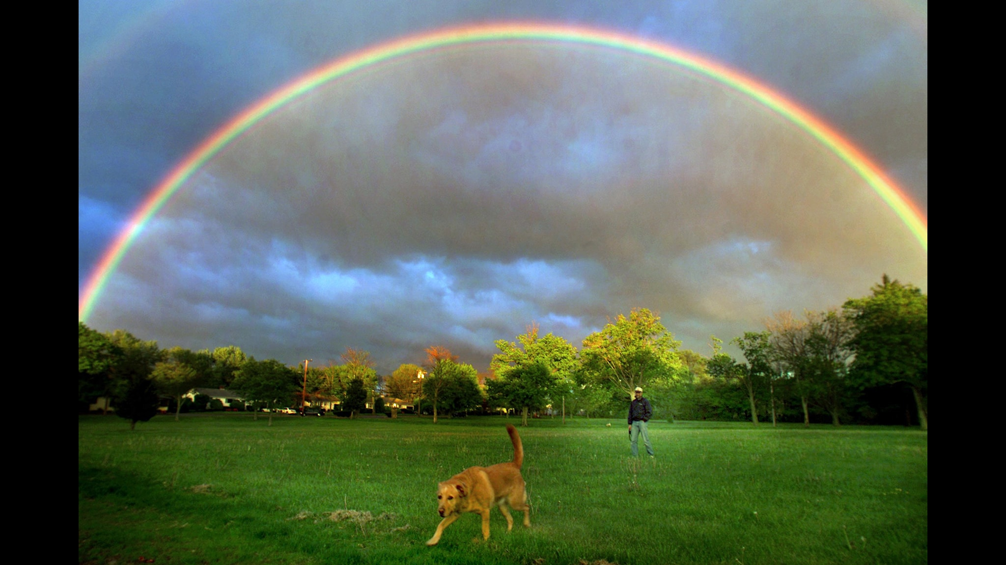 Regnbågens alla färger  Foto: John Tlumacki  TT Bild