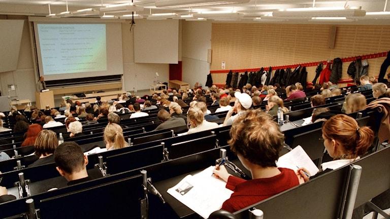 Bild på elever i ett klassrum.