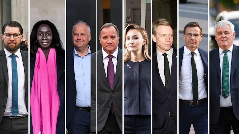 alla partiledare, SD, L, V, S, KD, MP, M, C