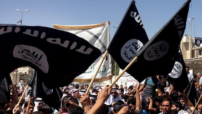 Islamiska statens anhängare i Syrien. Foto: TT Nyhetsbyrån