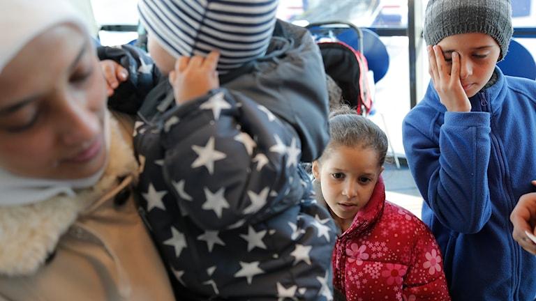 Flyktingkris. Foto: TT