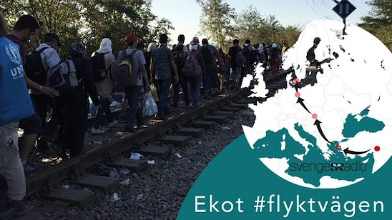 #flyktvägen (rêya koçê). Wêne: Radyoya Swêdê
