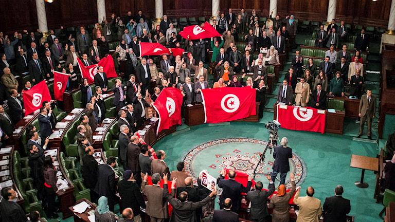 Tunisisk samling med flaggor. Foto: TT