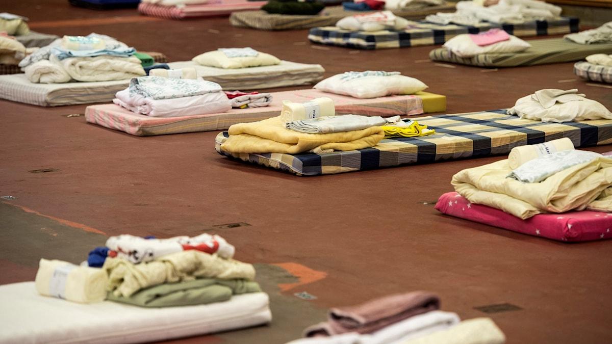 Madrasser och sängkläder. Foto: Pontus Lundahl/TT.
