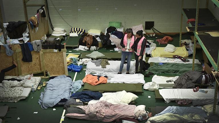 flyktingar .  Foto: Anders Wiklund / TT