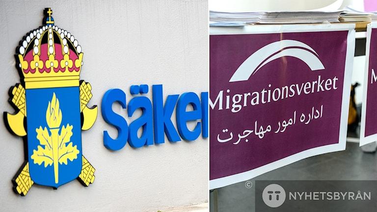 سپو از اداره مهاجرت خواسته است تا امکان بررسی پروندههای پناهجویان را داشته باشد  Foto: Anders Wiklund/TT, Maja Suslin/TT