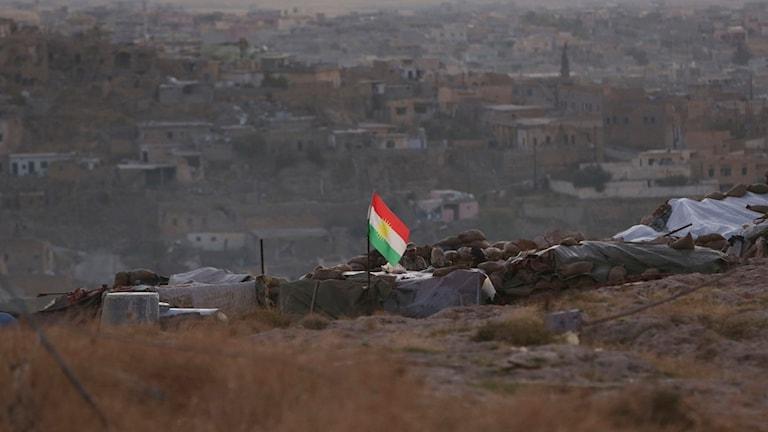 Den kurdiska flaggan vajar över yezidistaden Sinjar. Foto: TT