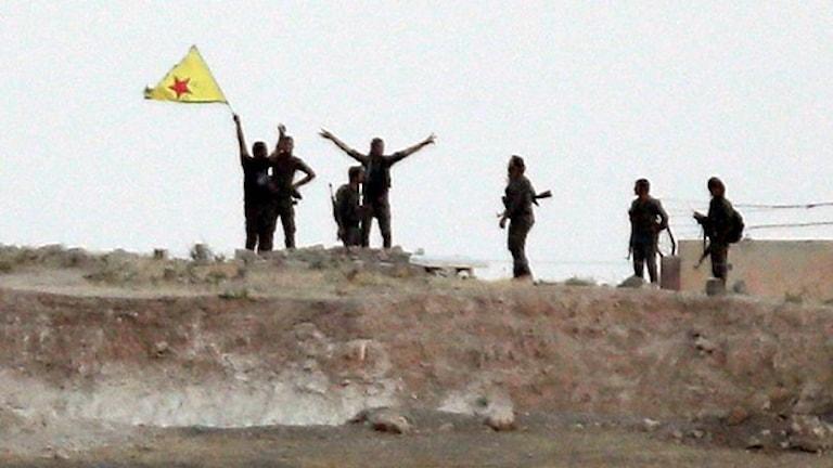 Kurdiska YPG styrkor.