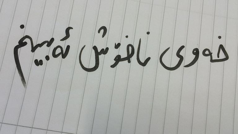Foto: Nazanin Mahmoud
