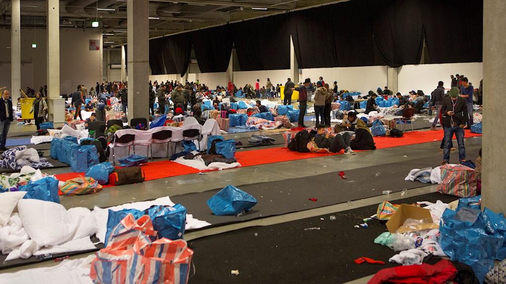 Massor med flyktingar i stor sal med madrasser.