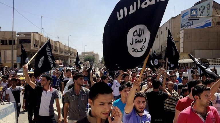 Islamic State. Foto: TT.