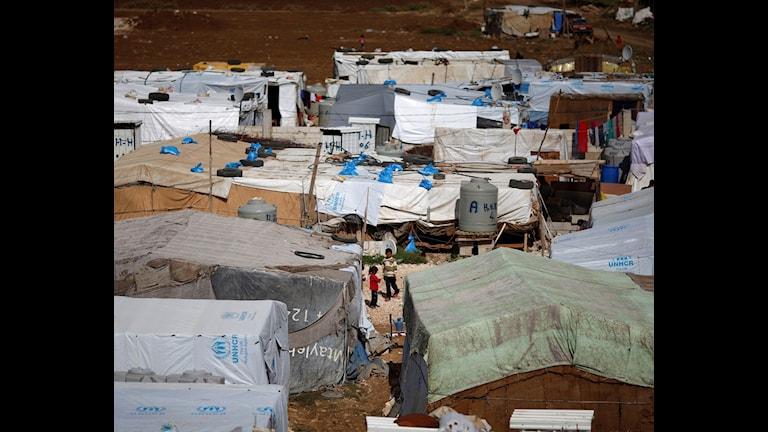 Kampeke penaberên sûrî li bajarokê Hosh Hareem. Wêne: Hassan Ammar/TT.