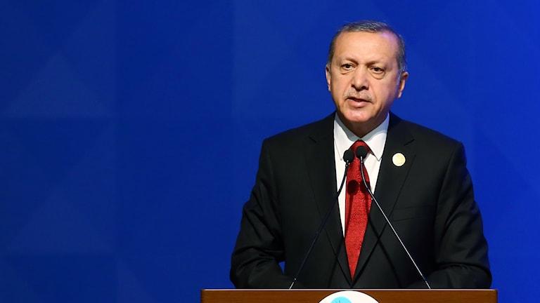 Serokê Turkiyeyê Recep Tayyip Erdogan.