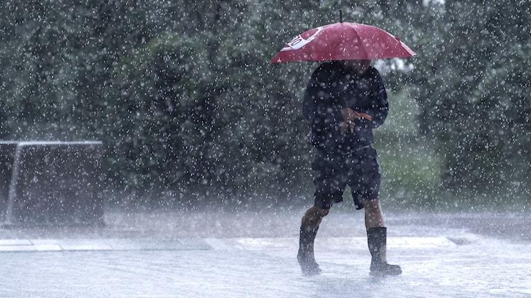 Person med rött paraply i regnväder
