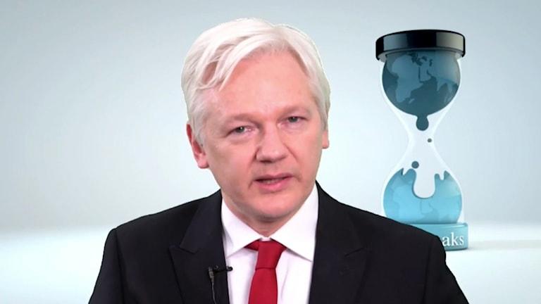 Damezrênerê Wikileaksê, Julian Assange.