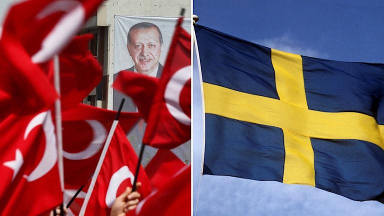 Turkiska flaggor med Erdogan, Sveriges flagga.