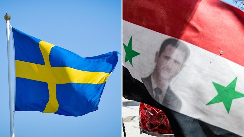 Sverige, Syrien, Swêd, Sûrî, Asad, Asaad, Beshar.