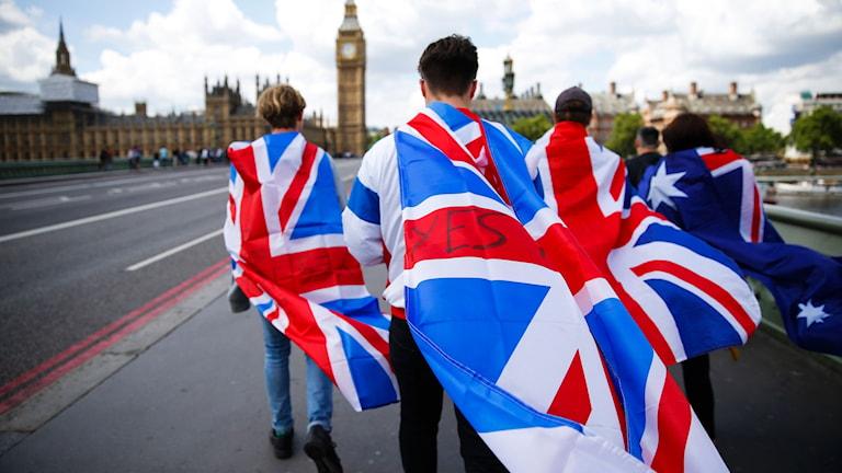 Gående EU-anhängare med Storbritaniens flaga