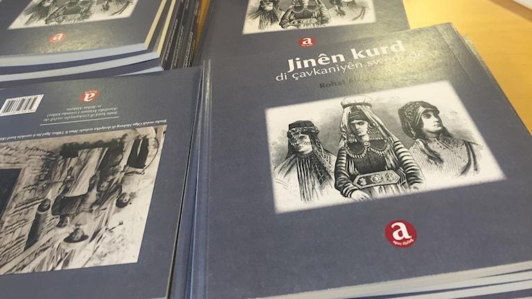 """""""Jinên kurd di çavkaniyên swêdî de"""""""