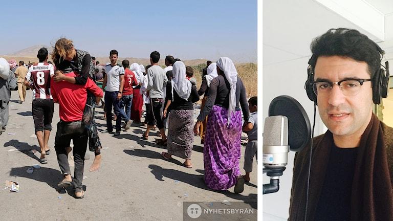 FN utredaren Pishko Shamsi och flyende yazidier