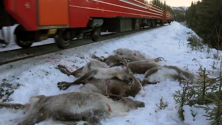Arkivbild från tidigare olycka i Nordland i november.
