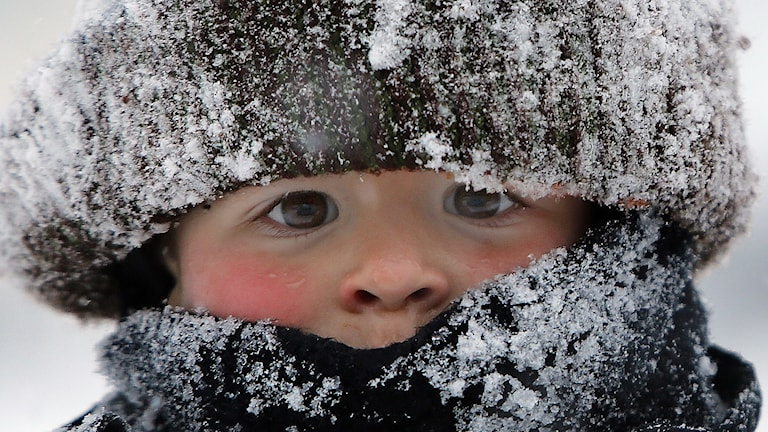 Kyla, frost, vinter, kallt