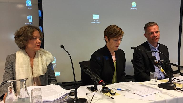 Staternas representanter i förhandlingar om Samekonventionen