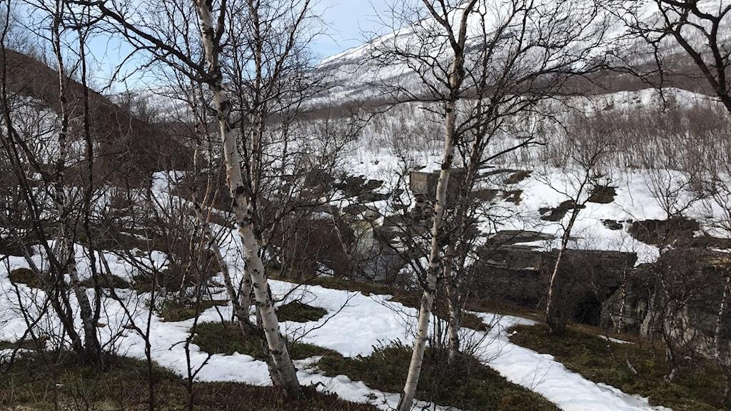 Abiskojohka, fyra kilometer från där olyckan skedde. Foto Mikaela Sjöstedt/Sameradion & SVT Sápmi.