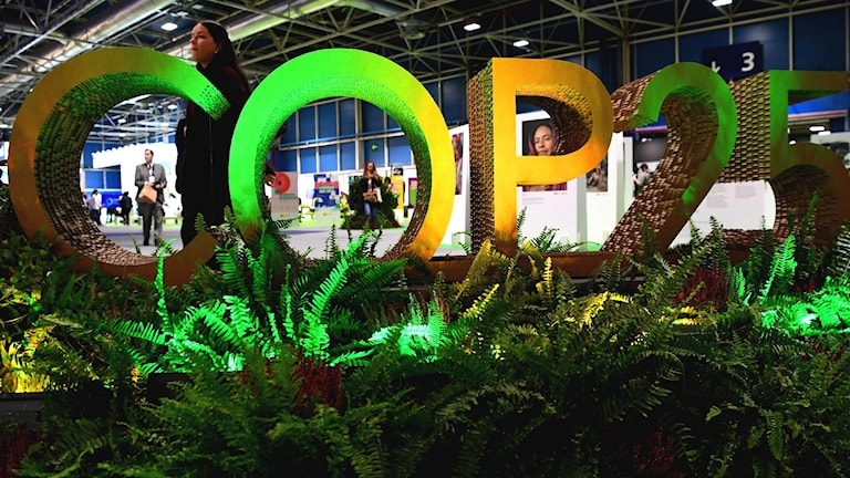 COP25 börjar idag i Madrid.