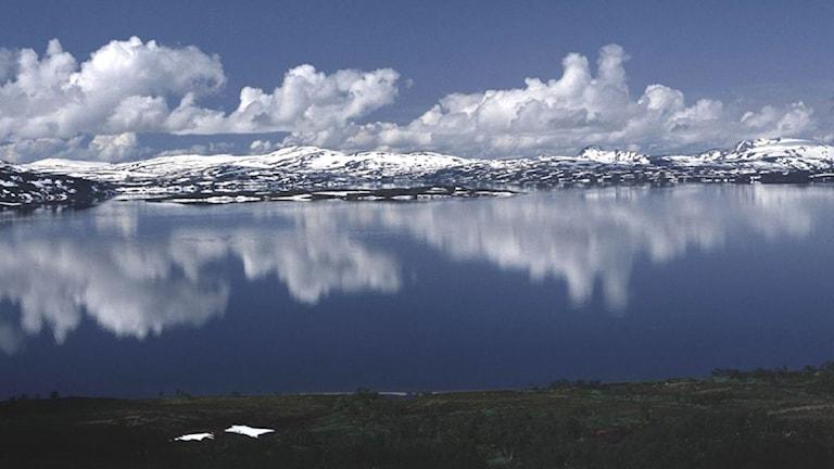 Foto: Gösta Nordström/ Scanpix.