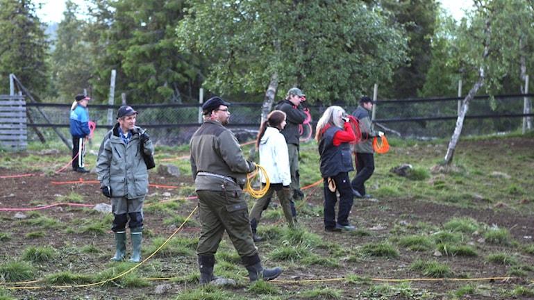 Die Besitzer der Rentiere, Samen, ziehen mit den Herden zu den Sommer- und Winterweiden. In Schweden benutzen sie dabei modernste Technik, Helikopter, GPS, Mobilfunk usw.