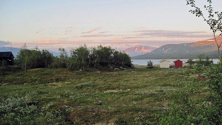 Altevann i Nordnorge, kalvmärkningsland för Saarivuoma. Foto: Anne-Maret Blind