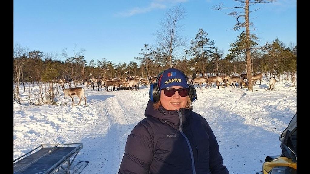 Jennie Granberg, vinterklädd med hörselkåpor över öronen, står framför en renflock i vintersolen.