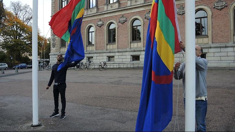 Den samiska flaggan hissas utanför Uppsala Universitet. Foto: Olle Kejonen / SR Sameradion