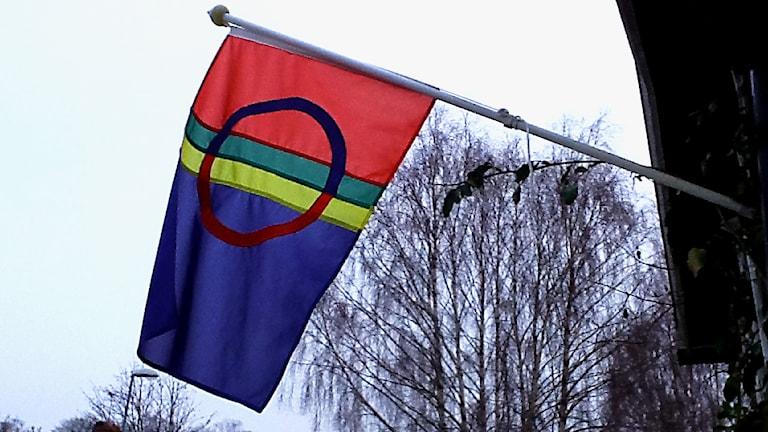Samiska flaggan på Samernas nationaldag 6 februari 2014 i Åkers Styckebruk. Foto: Heidi Johansson