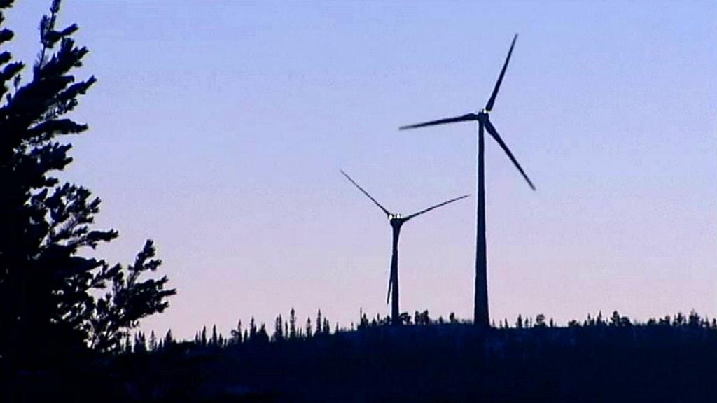 Vindkraftverk. Foto: SVT
