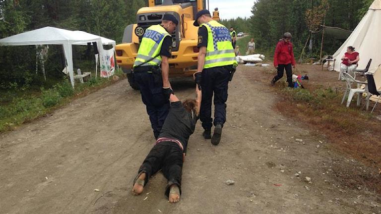 Demonstrant släpas av polis i Kallak. Foto: Henrik Blind
