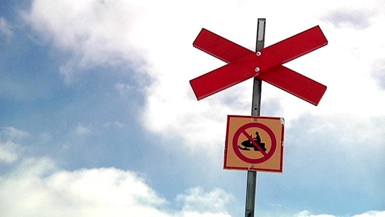 Kryssmarkering med skylt om skoterförbud. Foto: SVT