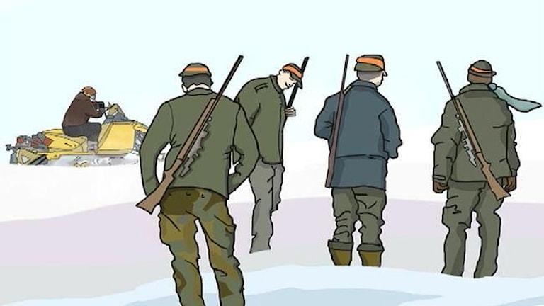 Illustration av olovlig vargjakt i norra Dalarna. Foto: SVT Design