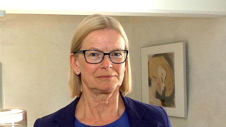 Justitiekansler, Anna Skarhed. Arkivfoto: SVT