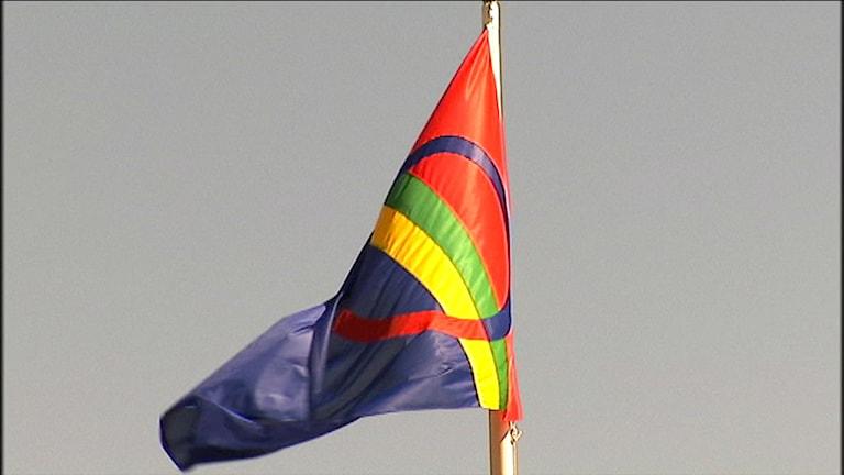 Den samiska flaggan. Foto: Stefan Karlsson/SVT Sápmi