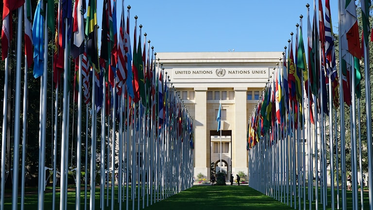 Förenta Nationernas kontor i Genève. Foto: Anna Sunna, Sveriges Radio Sameradion