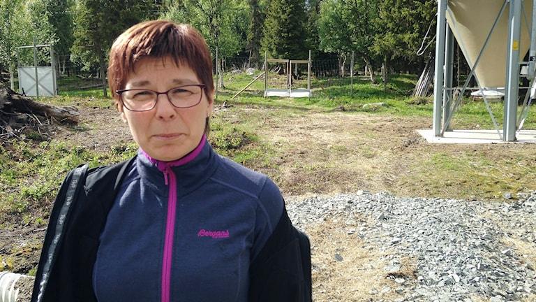 Marianne Persson, Jijnjevaerie samebys ordförande. Foto: Inga Marja Steinfjell/ Sameradion & SVT Sápmi